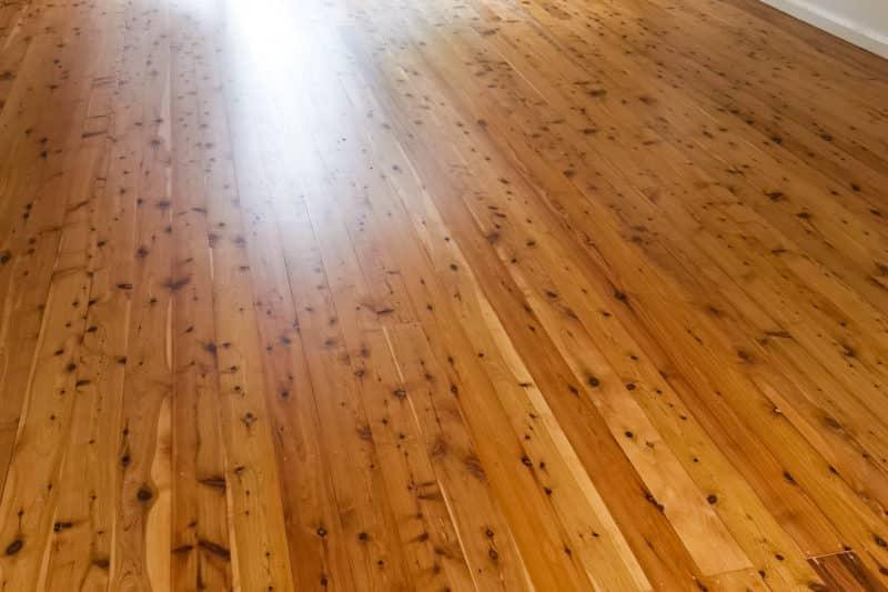Cypress Pine, 2K Aquaro Pro Water Base, Eleebana