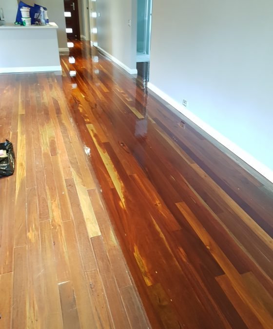 Newcastle Spotted gum Hard Wood Buff & Recoat